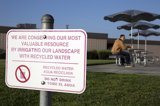 A sign explains that landscape is being irrigated with recycled water to conserve resources.