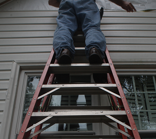 A man stands atop a ladder in this image.